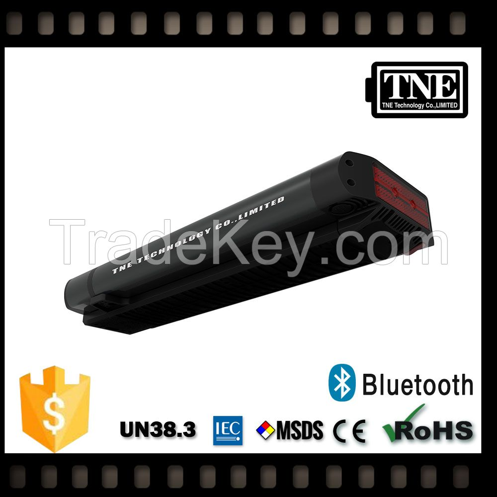 TNE 24v 600ah rechargeable protable electric bike battery