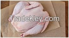 Hot Sale QUALITY Frozen Whole Chicken !!!