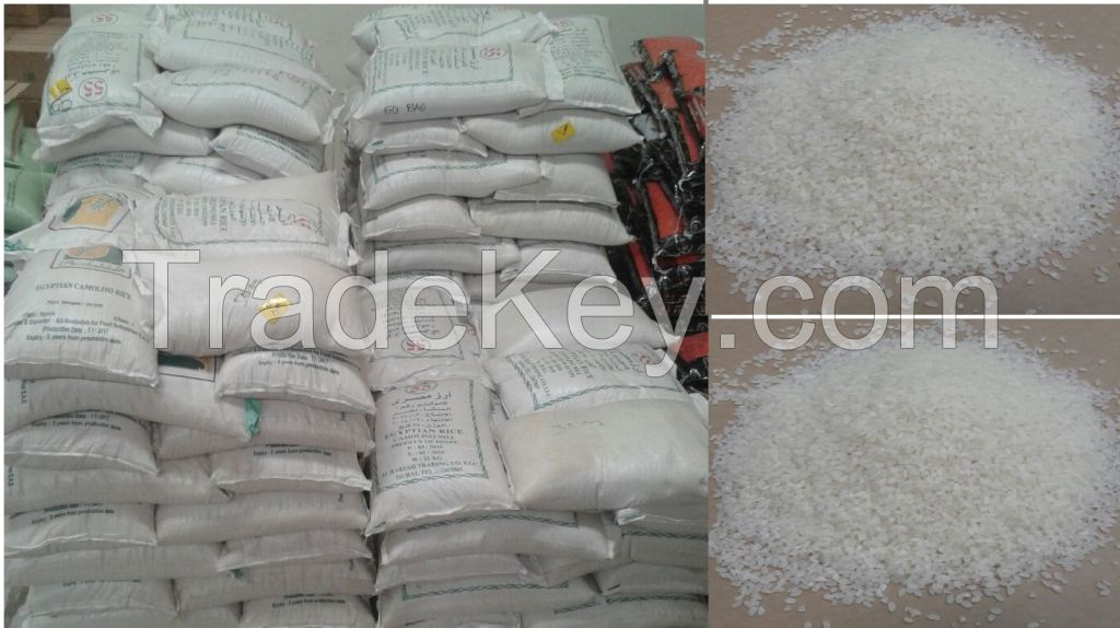 Exclusive Egyptian Rice Offer