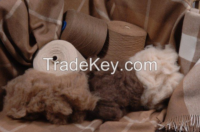 Dehaired cashmere and cashmere fabrics
