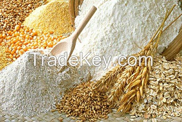 Russian Wheat Flour