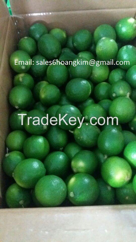 export fresh lemon seedless/ fresh lime