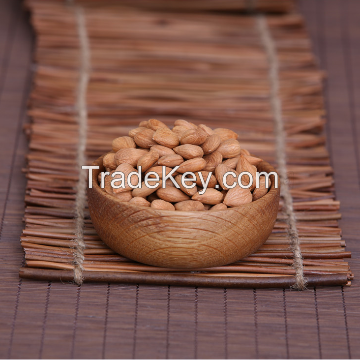 top quality raw organic bitter almond, almond seed, low price apricot kernel for sale