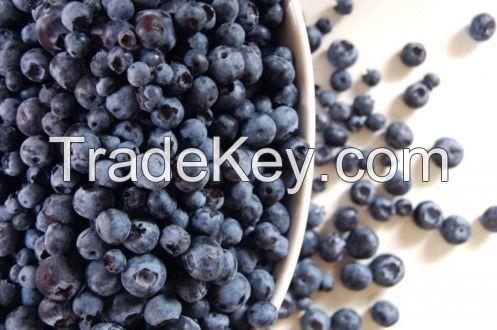 Organic Puree Bilberry (Vaccinium myrtillus)