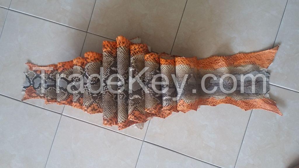 python snake skin hide