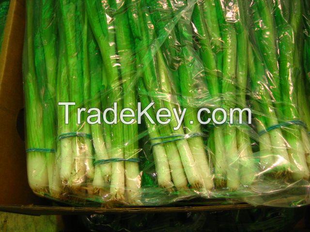 Onion,Spring Onion,Green Beans,Garlic,Sweet Potato