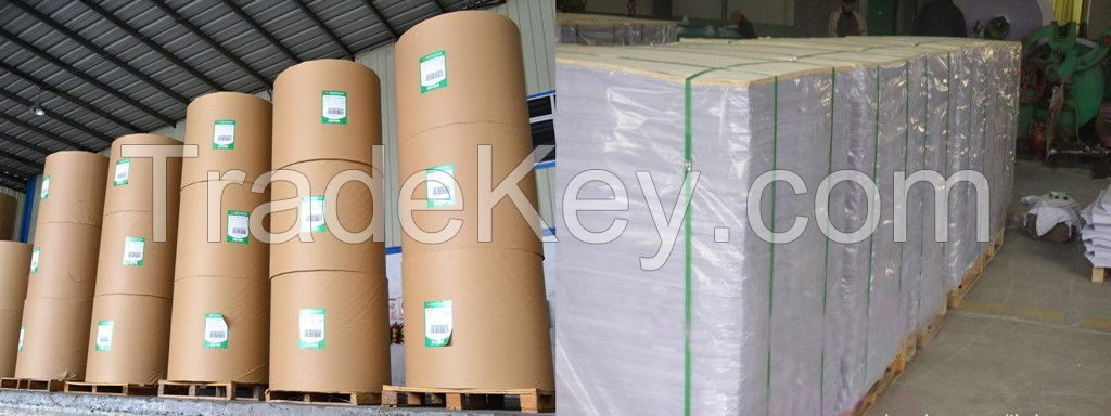 Woodfree Offset Printing Book Paper