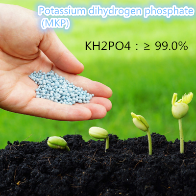 Agricultural compound fertilizer Diammonium phosphate (DAP)