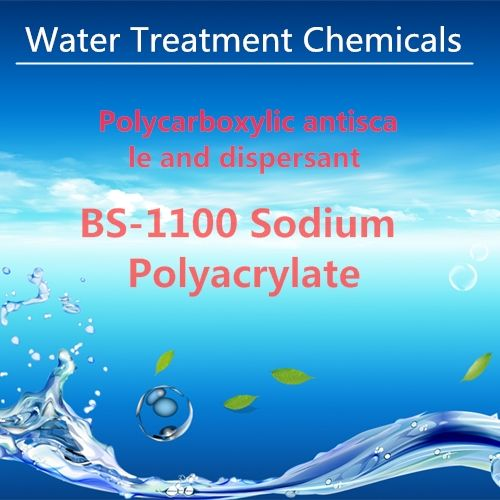 BS-1100 Sodium Polyacrylate