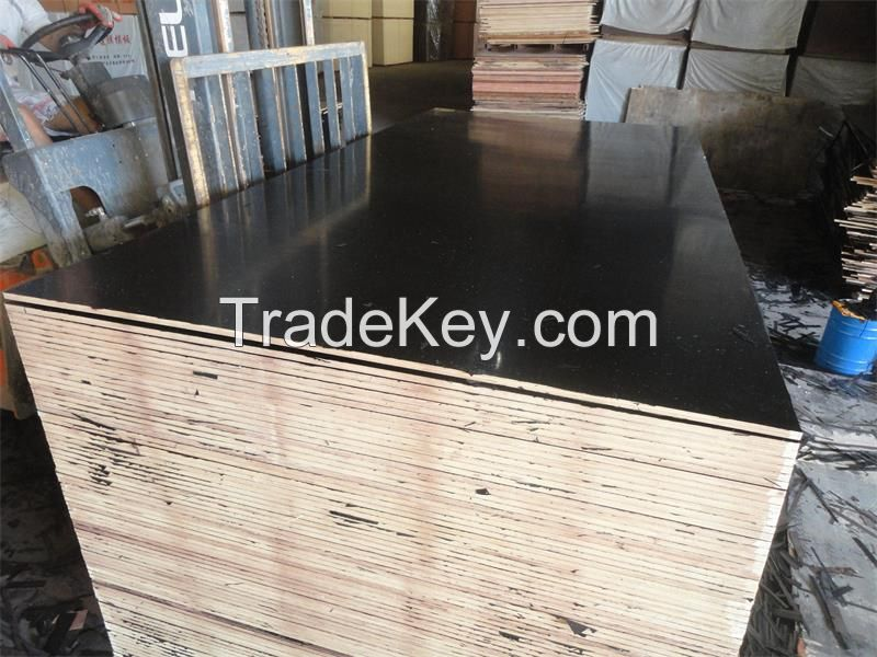 film faced plywood/shuttering board/construction board