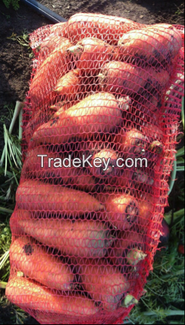 Carrots By Wholesale - For Export