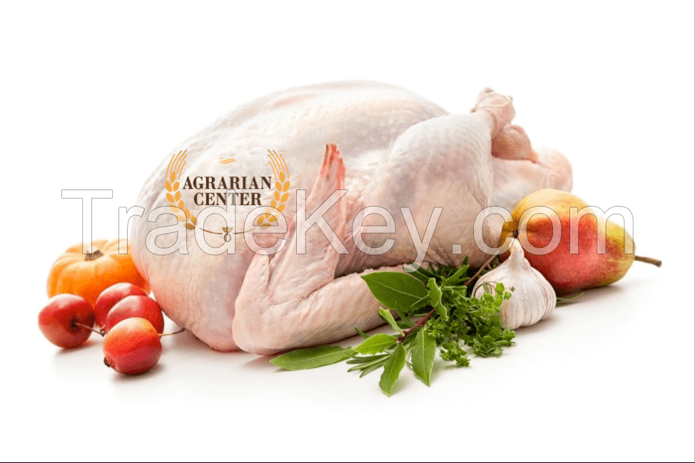 CHICKEN MEAT (whole chicken, fillet, legs, wings)