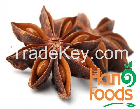 Dried Star Anise Spices