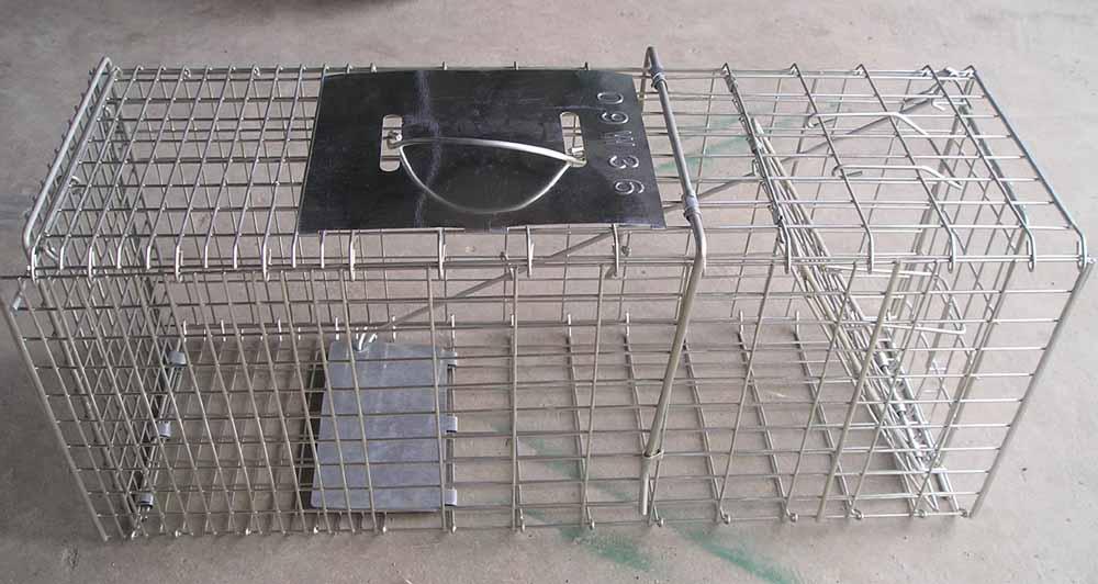 Rabbit Cage/ Squirrel Cage