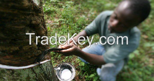 Natural Latex Rubber