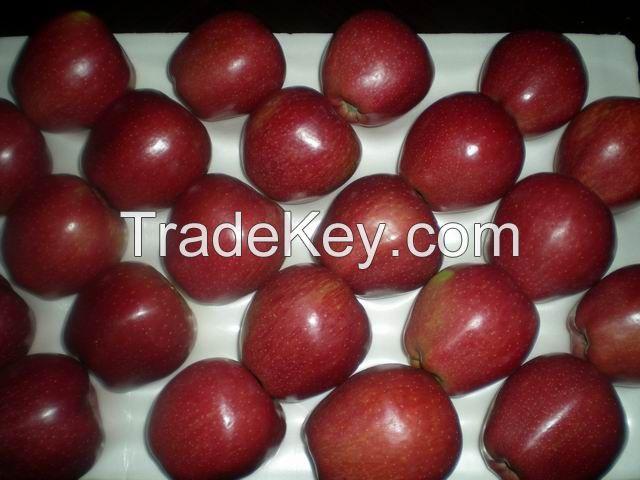 Grade A Fresh Fruits, Apples, Organges, Lemons, Grapes, Olives, Mangoes For Sale