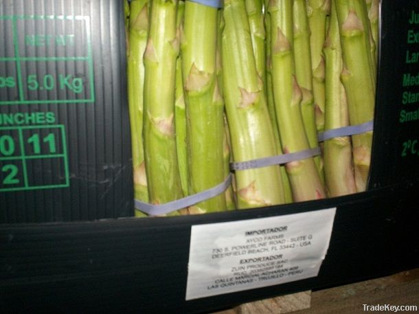 ASPARAGUS IN BOXES