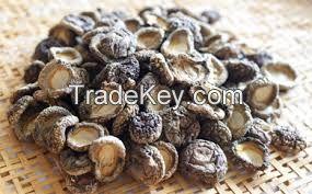 Japanese Dry Shiitake Mushroom