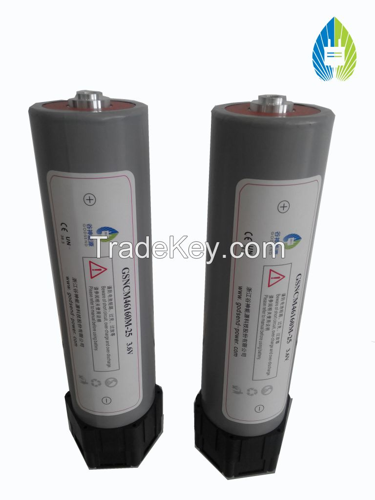 Lithium Ion Battery(NMC25)