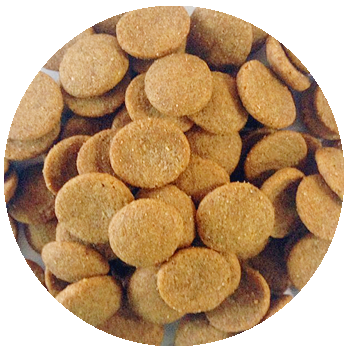 Pet Food (Dog Food ,Cat Food)