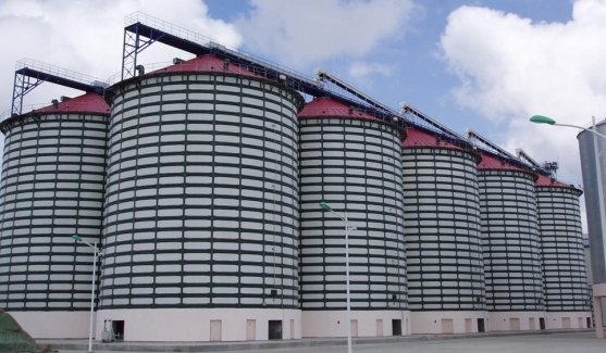 Assembly Steel Structure Heat-preservation Grain silo