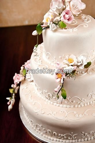 Bridal wear and related bridal products.