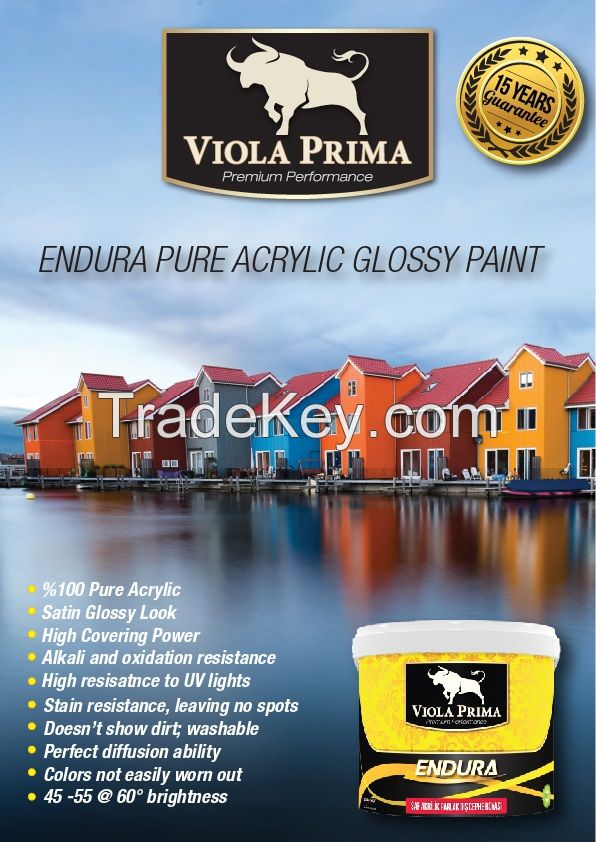 Endure pure acrylic glossy paints