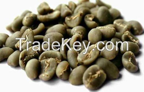 Grade 3 Arabica Coffee Beans from Sumatra