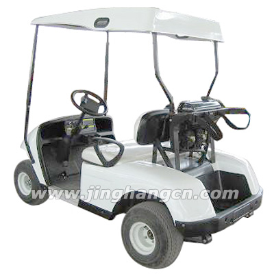 golf cart with 2seats