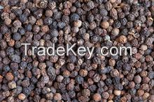 Spices products black pepper 550gl/ 500gl/whole black pepper white pepper