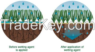 Wetting agent / surfactant
