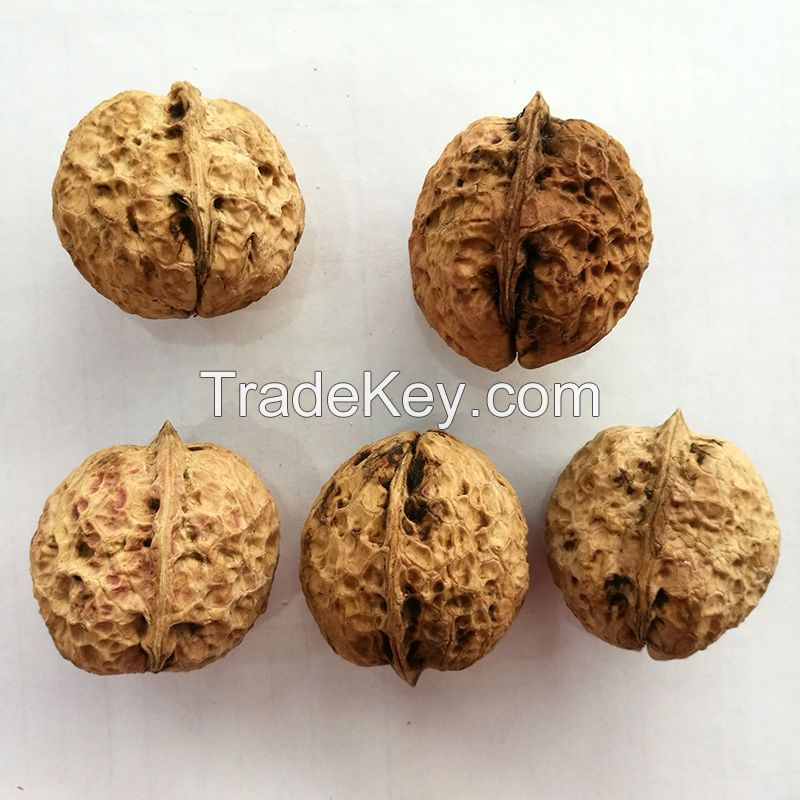 Walnuts in shell and walnuts kernel