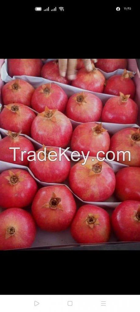 Egyptian pomegranate (Fresh and frozen )