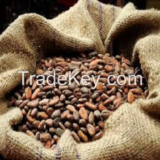 Good quality Dried Grade A Cocoa/ Cacao/ Chocolate bean