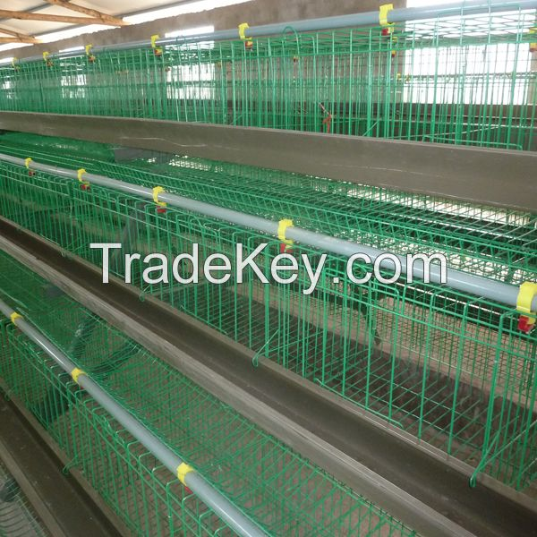 best sell a type chicken layer egg cages for poultry shed farm in south africa