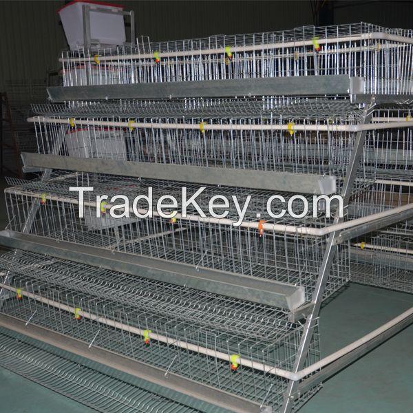 layer chicken cage for chicken farm for sri lanka