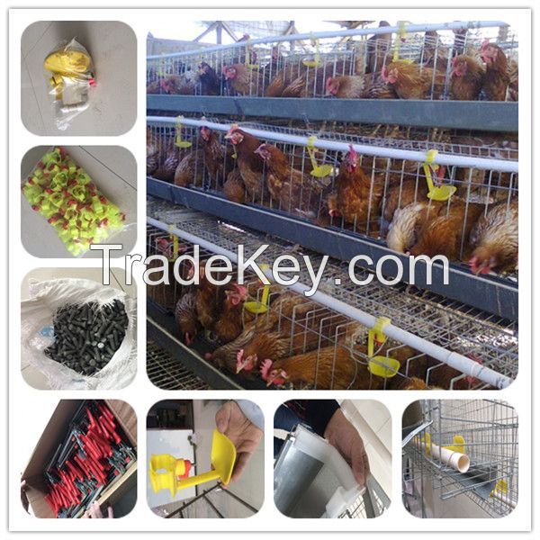 automatic breeding poultry farm cage design for big chickens