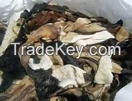 Wet/Dry Salted Donkey Skin, Cow Skin (Hides).