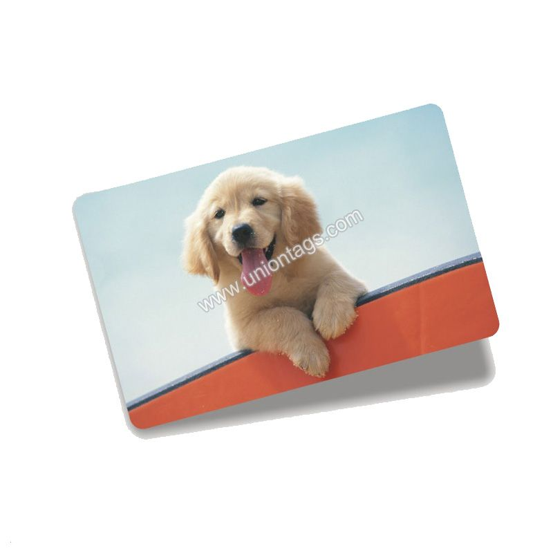 Access control card rfid Ti2048 with full color printing