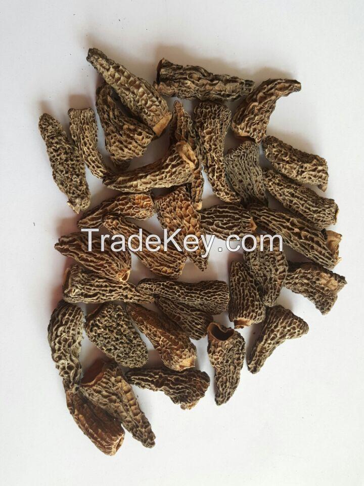 dried morchella(morels)