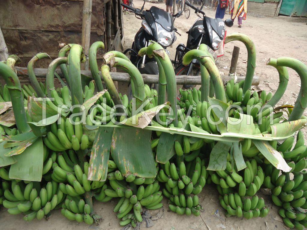 banana , fresh vegetable