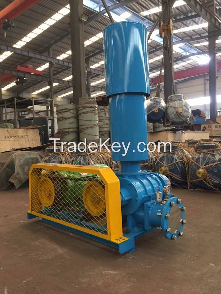 China roots blower used for waste water treatment