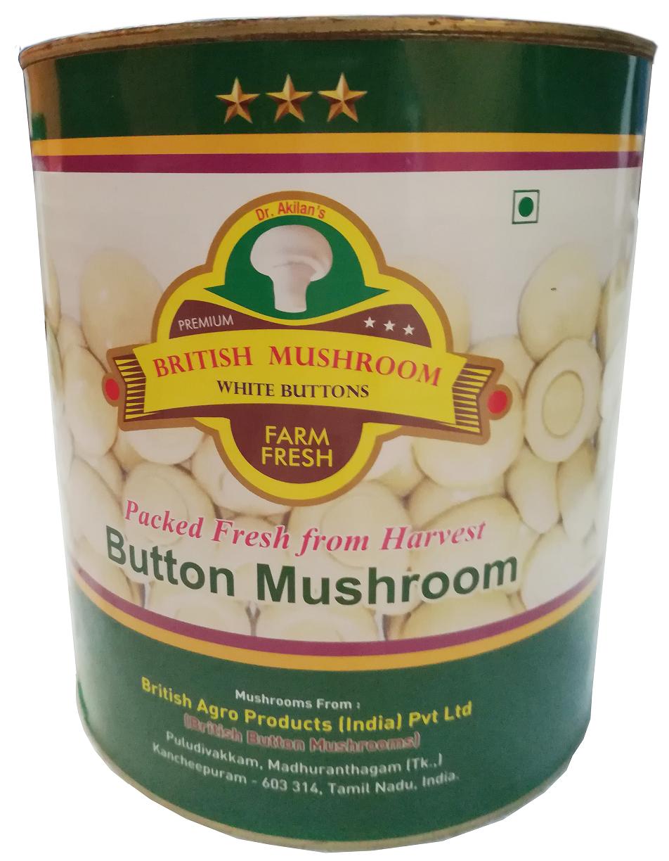 British Button mushroom