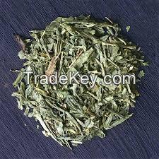 Chinese Green Tea Sen Cha the vert de china slimming green tea