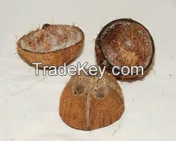 coconut shell chipscoconut shell chips