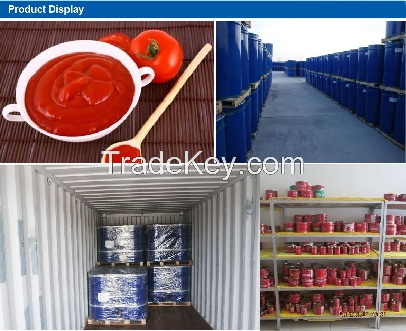 Wholesale canned tomato paste