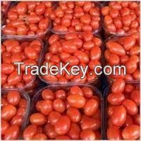Fresh Indian Tomatoes
