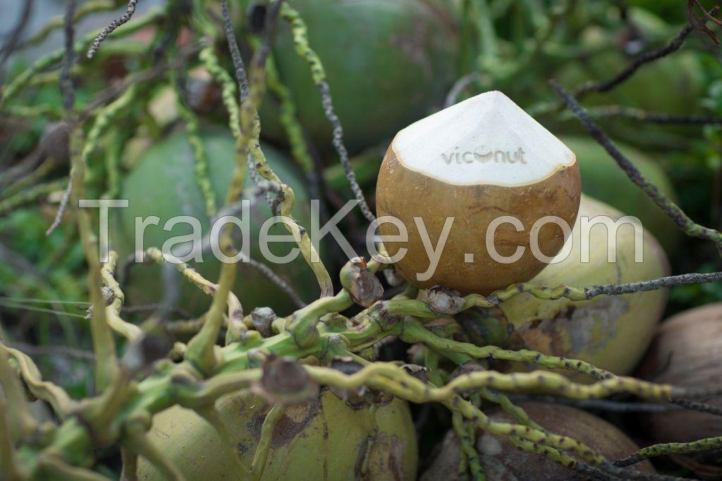 Tasty Fresh Coconuts (Viconut brand)