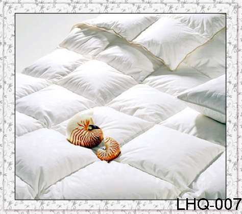 Quilt filled with duck down