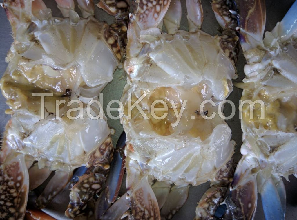 Frozen Blue Swimming Crabs Whole Round Male / Female separately packed, 30% with Eggs